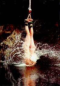 Bunjy splash
